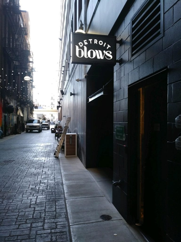 Blows Detroit illuminating blade sign push -thru letters hair salon signage