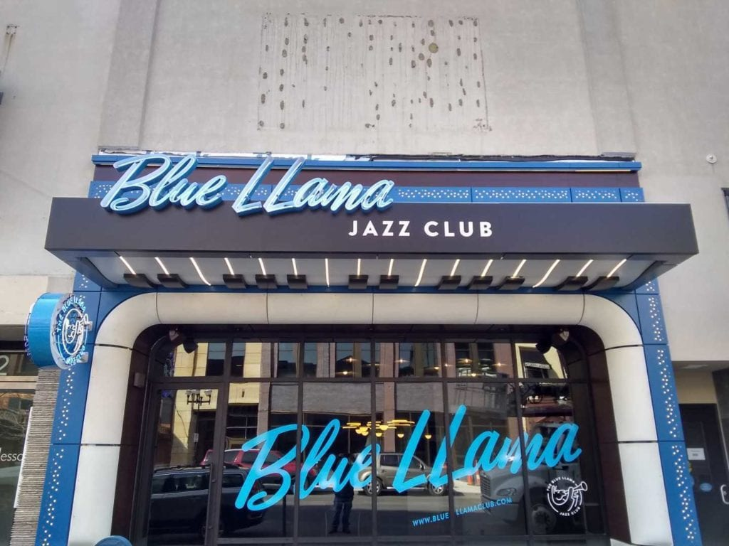Blue LLama Signage Window Graphics and Neon Open Faced Channel Letters